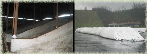 Old Vinaccia Bins (left) & New Vinaccia Bag (right)